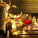 20LED Halloween iluminan decoraciones guirnalda hoja de arce Halloween colgante cadena luces funciona con pilas para interior al aire libre