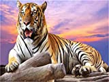 Paint by Numbers Yawning Tiger DIY Number Oil Painting Kit Brushes & Acrylic Paint by Canvas for Adults Beginner Painting for Wall Decoration 16 x 20 inch Without Frame