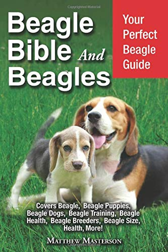 Beagle Bible And Beagles: Your Perfect Beagle Guide: Beagle, Beagles, Beagle Puppies, Beagle Dogs, Beagle Breeders, Beagle Care, Beagle Training, ... Grooming, Breeding, History and More!