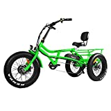 Addmotor Motan Electric Tricycle Beach Snow Bicycle Three...