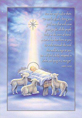 A Savior Has Been Born - Designer Greetings Box of 18 Religious Christmas Cards