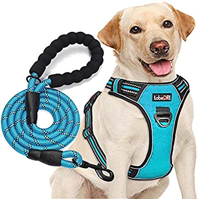 """tobeDRI No Pull Dog Harness Adjustable Reflective Oxford Easy Control Medium Large Dog Harness with A Free Heavy Duty 5ft Dog Leash (L (Neck: 18""""-25.5"""", Chest: 24.5""""-33""""), Blue Harness+Leash) from tobedri"""