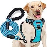 tobeDRI No Pull Dog Harness Adjustable Reflective Oxford Easy Control Medium...
