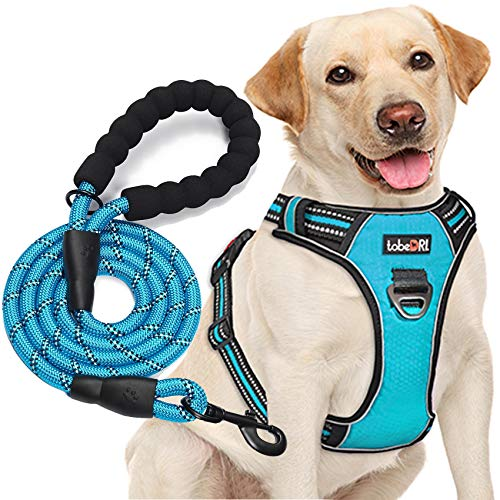 tobeDRI No Pull Dog Harness Adjustable Reflective Oxford Easy Control Medium Large Dog Harness with A Free Heavy Duty 5ft Dog Leash (L (Neck: 18