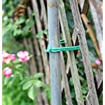 Soft Twist Tie Garden Plant Tie 8 : Green Plant tapes soft TPR, garden twist tie, garden tie for plants. 16 feet long of 5 mm / 0.197 inches width (diameter). : UV Inhibitor included in TPR material, lasts long among your garden supplies. : Supporting tomatoes and roses, this twist tie works well with organizing flowers and vegetations in the garden.
