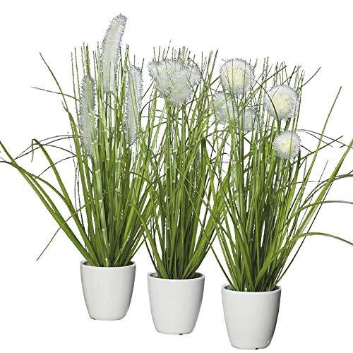 Klocke Dekorationsbedarf Kunstpflanze - Gras im Topf - 3 Stück - Höhe: 36cm - Farbe: Grün/Creme - Kunstgras/Tischdeko