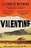 Valentine: A Stunning Debut and a New York Times Bestseller (English Edition)