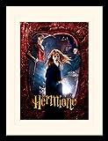 Harry Potter 1art1 Hermine Granger, Emma Watson Gerahmtes