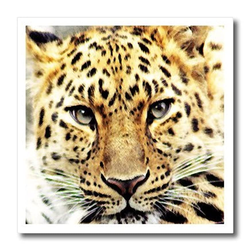 3dRose ht_218210_3 Leopard Popular Image Iron on Heat Transfer for White Material, 10