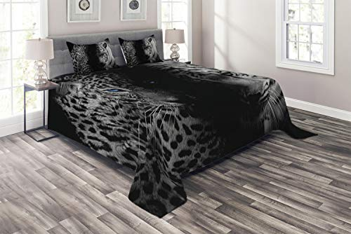 Ambesonne Black and White Coverlet, Leopards with Blue Eyes Aggressive Powerful Wildcat Profile Print, 3 Piece Decorative Quilted Bedspread Set with 2 Pillow Shams, King Size, Black Blue