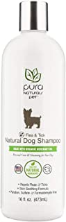 Pura Naturals Pet - Flea and Tick Natural Dog Shampoo, Natural Pest Relief, No Harsh Ingredients, Eco-Friendly (16 Ounce)