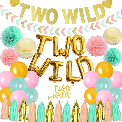 Fangleland Two Wild Boho Birthday Decorations Girl Tribal 2nd Birthday Party Supplies Two Wild Balloons Banner Mint Pink Gold Arrow Banner Tassels