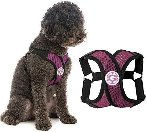 Gooby Dog Harness - Purple, X-Large - Comfort X Step-in Small Dog Harness with Patented Choke-Free X Frame - Perfect on The Go No Pull Harness for Small Dogs or Cat Harness