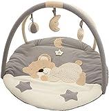 Bieco 37000909 Krabbeldecke Bärchen mit Spielbogen für das Baby, 3 abnehmbare Spielzeuge, ca 90 cm  aus Baumwolle  super kuschelig weich