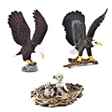 Simulated Bald Eagle Model Realistic Eaglet Figures Plastic Eaglet Action Figure for Collection Science Educational, Set of 3