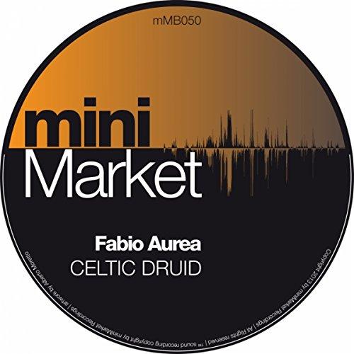 Celtic Druid