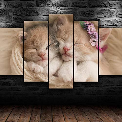 BHJIO Impresiones En Lienzo 5 Piezas Cute Kittens Pet Cat Poster HD En Lienzo Modular Modern Interior Decorations Wall Art-Tamaño Regalo 150 * 80Cm.