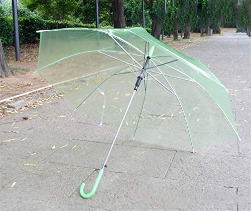 pyty123-umbrella Voll Transparenter Schirm Mit Regenschirm Für Werbung