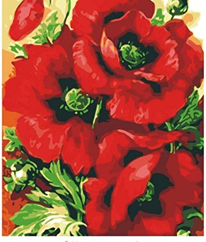 LIWEIXKY DIY Ölgemälde Durch Zahlen Färbung Durch Zahlen Auf Leinwand Poppy Flower Hand Malerei Nordic Dekoration Geschenk - Rahmenlos - 40x50cm B07PQM795V | Online Kaufen