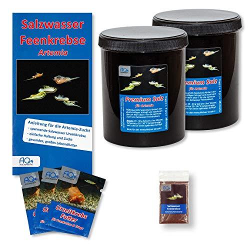 AQ4Aquaristik Artemia franciscana Zucht-Set für 60 l: Zuchtansatz - Salzwasser Feenkrebse Eier aus Deutscher Zucht, 2 kg Premiumsalz, Urzeitkrebse Futter und Anleitung - Nauplien - Brine Shrimps