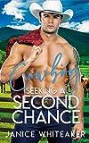 Cowboy Seeking a Second Chance (Cowboy Classifieds Book 2)