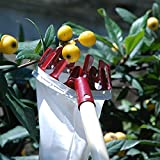 Home-organizer Tech Fruit Picker Package Useful Fruit Picker Pole Gardening Apple Pear Peach Picking Tools(Color in Random May White, red, Orange)