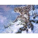 DIY 5D Diamond Painting Kits de Taladro Completo Tigre en la nieve Diamante Pintura por Número Kit Crystal Rhinestone bordado de punto de cruz fotos para la decoración del hogar-Square drill,40X50cm