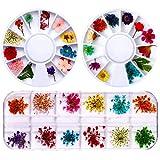 36 Piezas Flores Secas para Uñas Real Flores,Real Flores secas 3D Nail Art Stickers Decoración,Mini Flores Secas de Uñas para Consejos,DIY Preserved Flower Stickers,Colores Pegatinas de Uñas Flores