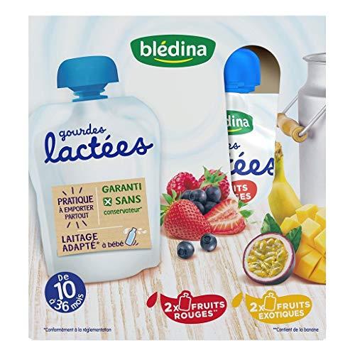 Blédina Bébé Bla © Dina Kürbisse Lacta © Sind Rote Früchte und exotische Früchte (von 10 bis 36 Monaten) mit dem 4 Kürbissen Von 85G (von 4 Lot entweder 16 gourdes)