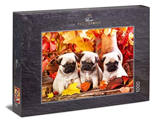 Ulmer Puzzleschmiede - Puzzle 'Cuccioli adorabili' - Carino animale bambino immagine di tre cuccioli di carlino carino per gli amanti dei cani