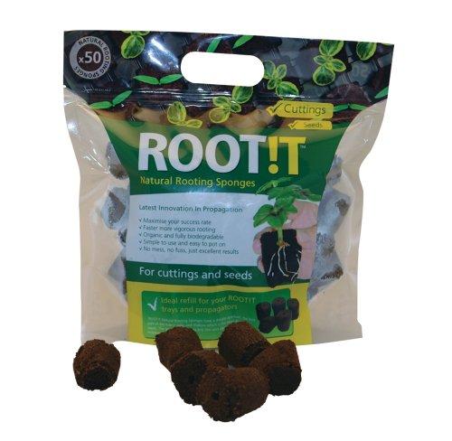 Root !T Spugne per la Radicazione, Confezione da 50 Ricariche
