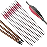 HBG Archery 30Inch Carbon Arrows,12 - Pack High Percentage Carbon-Fiber Arrow Spine 500 with 5 Inch Turkey Feathers Fletching & Removable Points Tips for Recurve,Compound,Long Bow Hunting