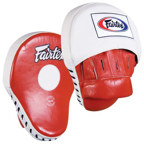 Fairtex focus mitts