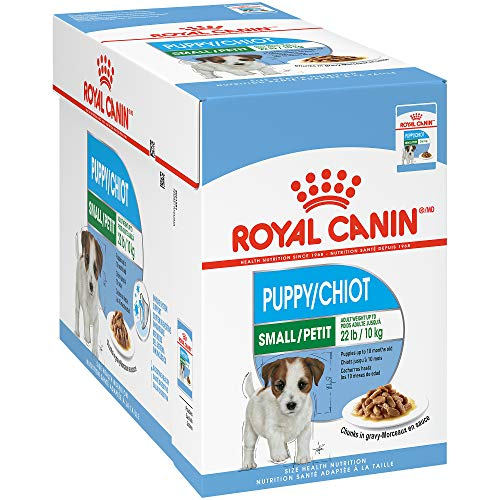 Royal Canin Small Breed Puppy Wet Dog Food for Pugs
