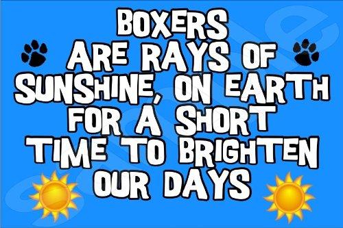 Boxershorts sind Strahlen der Sonne, On Earth für eine kurze Zeit verschönern Sie unseren Tagen, Jumbo-Magnet Geschenk/Geschenk