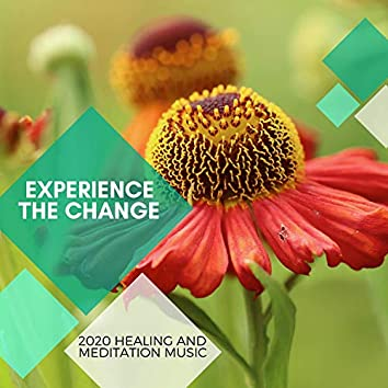 Experience The Change - 2020 Healing And Meditation Music
