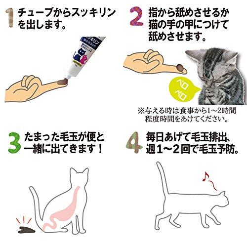 現代製薬スッキリンおなかの毛玉除去ペースト(動物用医薬部外品)