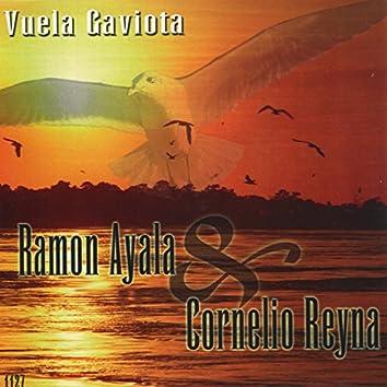 Vuela Gaviota