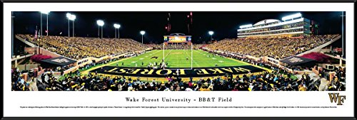 Wake Forest Demon Deacons NCAA Framed 8x10 Photograph Team Logo