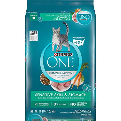 Purina ONE Natural Dry Cat Food, Sensitive Skin &...