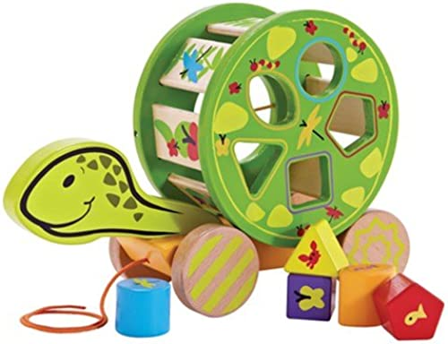 [Hape Echo ]natural wood turtle road rock play