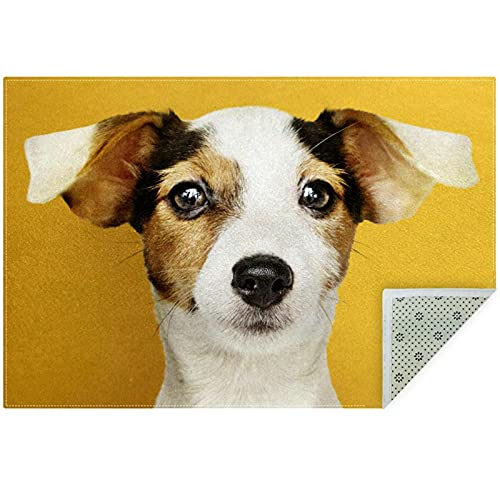 nakw88 Alfombra antideslizante grande y suave alfombra gruesa para el suelo interior para sala de estar, dormitorio, oficina, decoración del hogar, 150 cm x 100 cm, adorable cachorro