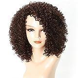 Stile africano sbatte parrucca riccia senza cappuccio parrucca capelli sintetici profondi color ruggine marrone parrucca sintetica da 15 pollici le donne afro-americane