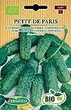 Germisem Biologico Petit de Paris Semi di Cetriolo 2 g