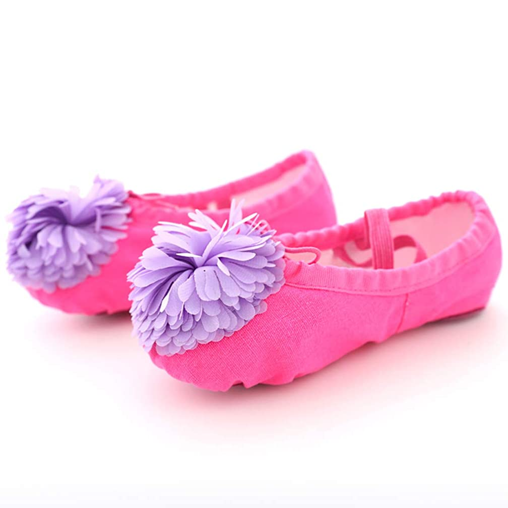CARMEC Ballet Shoes for Girls/Kids Canvas Ballet Flats Ballet Slippers/Dance Shoes-SL-105(Flower) (26(17cm), Rose Red+Purple)