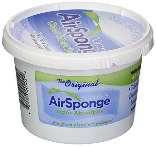 Nature's Air Sponge