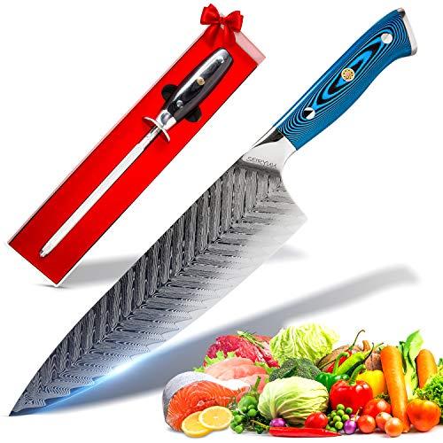 SEIRYUU 20cm/8-Inch Gyuto Chef's Knife - Japanese Pro Chef Series -...
