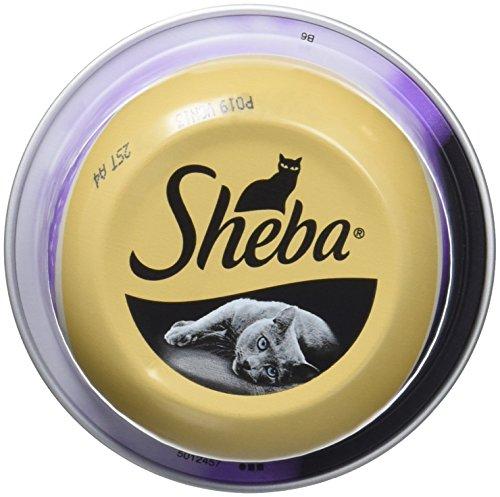 SHEBA Dôme Filet de thon et crevettes roses pour chat 80g (24)
