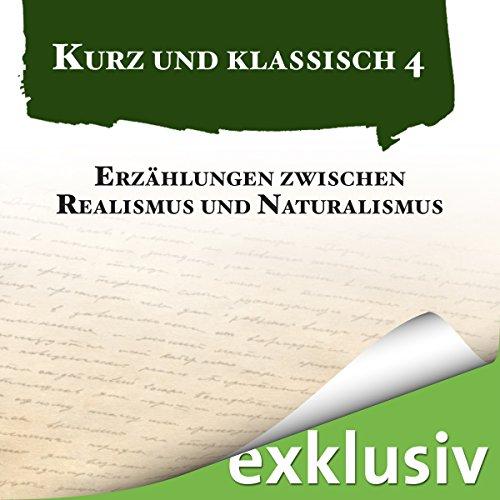 Erzählungen zwischen Realismus und Naturalismus audiobook cover art