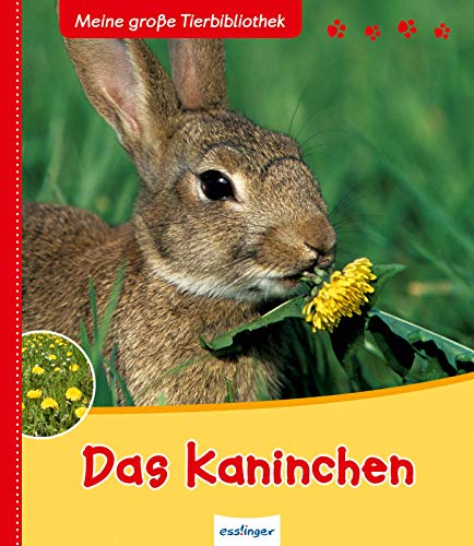 Das Kaninchen (Meine große Tierbibliothek)
